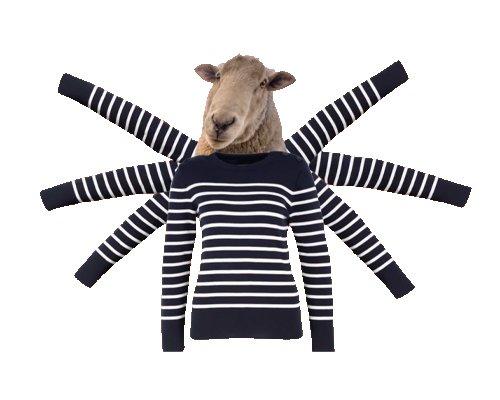 Boris The Brainy Book Bedtime Stories Image Striped Woolly Jumper Joke