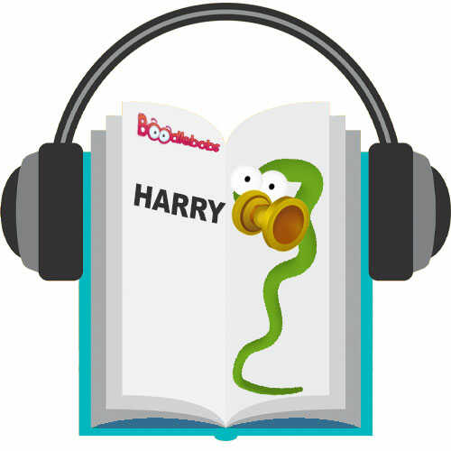 Kids Audiobook Harry